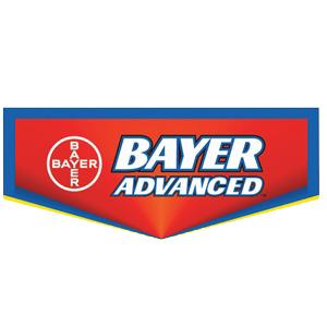 Bayer_SQ